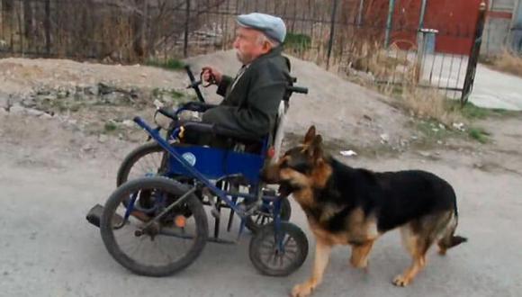 Antoly y Magnus son grandes amigos. La mascota ayuda siempre a su amo empujando su silla de ruedas.   Foto: @Thund3rB0lt