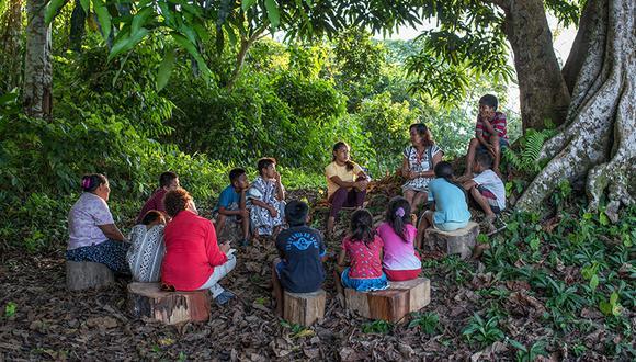 """""""El Libro de Nuestra Selva"""" recopila cuatro relatos tradicionales de los pueblos yine y matsigenka."""