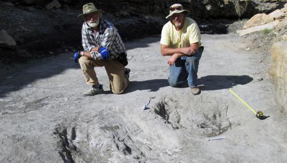 Vinculan marcas con rito de apareamiento de dinosaurios